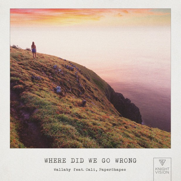 Where Did We Go Wrong - Wallaby ft. Cali & PaperShapes
