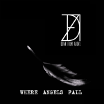 Down From Above - Where Angels Fall