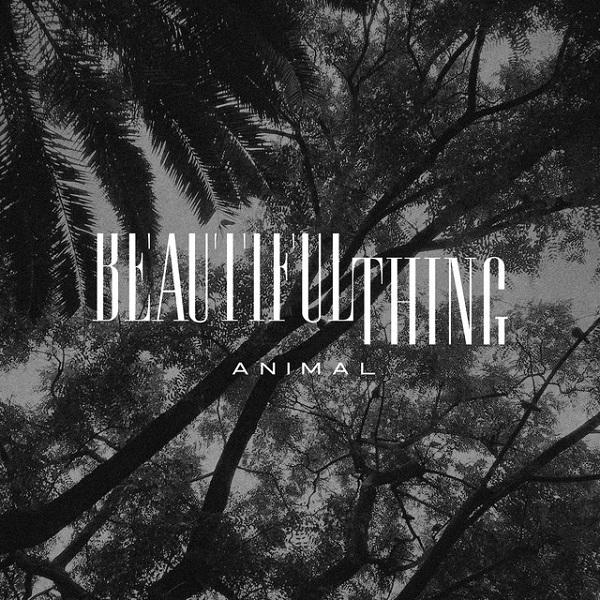 Beautiful Thing - Animal