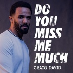 Craig David - Do You Miss Me Much