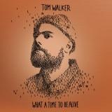 Tom Walker - Better Half of Me